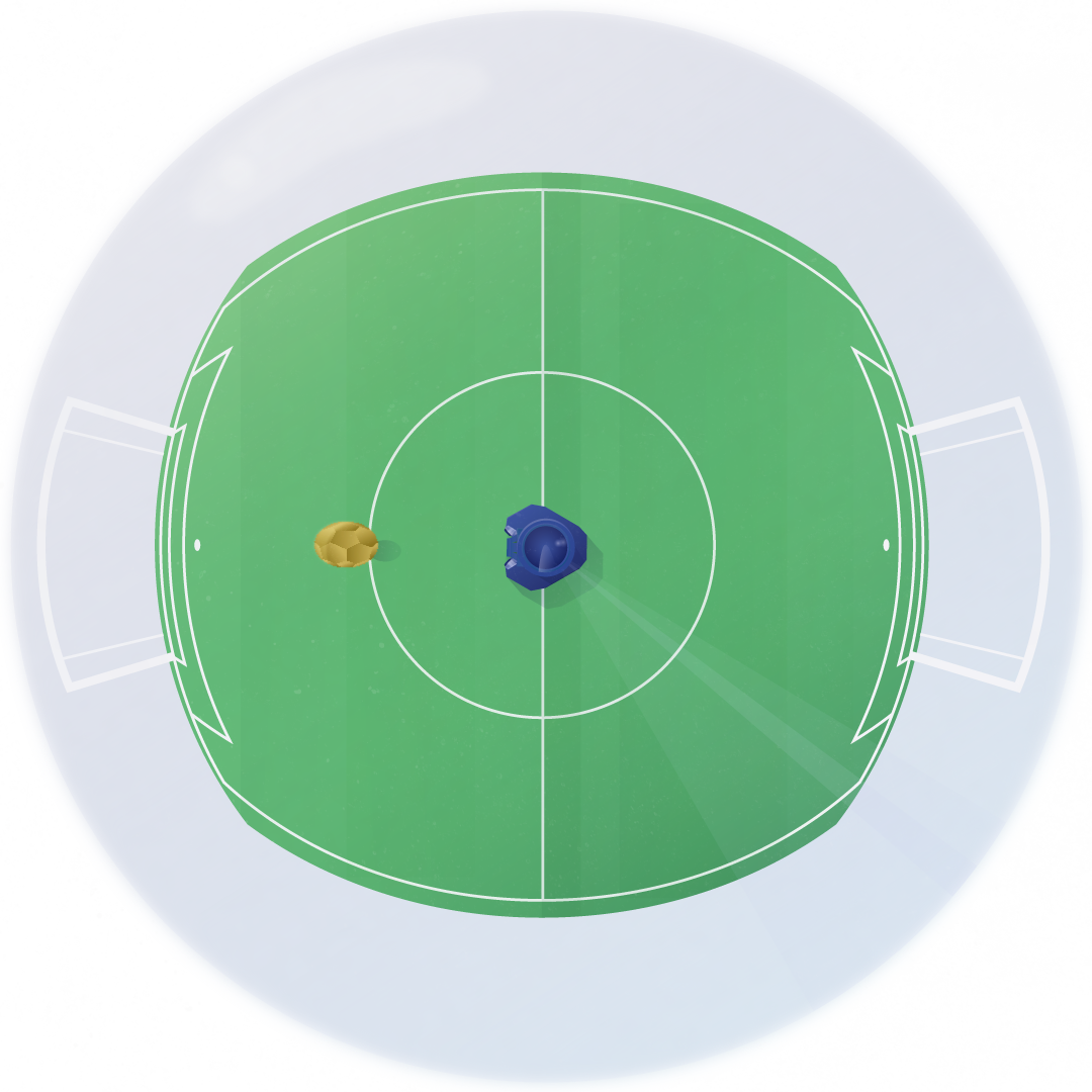 How the soccer robots see the world